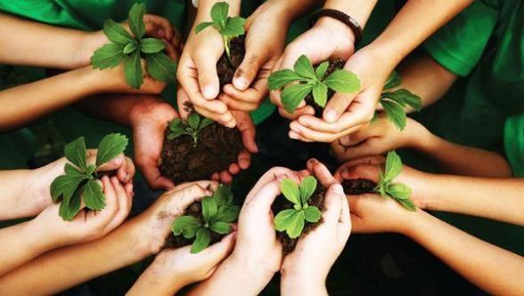 Fortalecimiento de la cultura ambiental